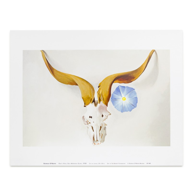 37 Georgia O'Keeffe - Ram's Head, Blue Morning Glory, 1938