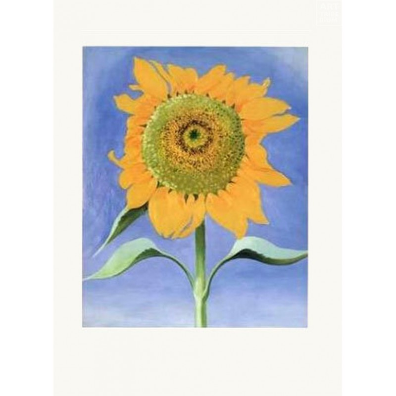 44 Georgia O'Keeffe - Sunflower, New Mexico I, 1935