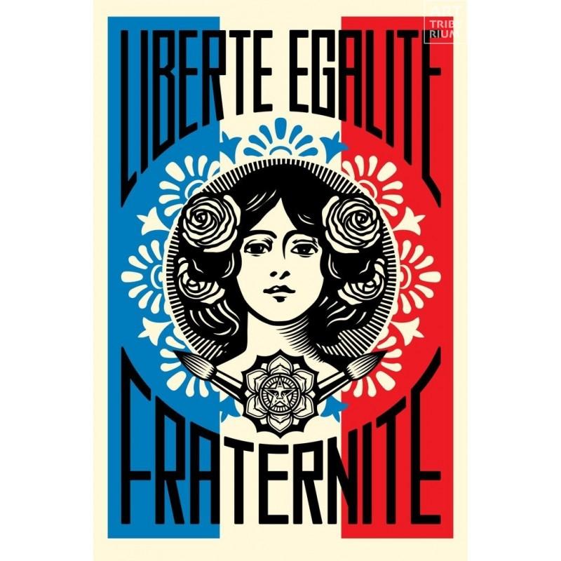 27 Shepard Fairey Obey - Liberté Egalité Fraternité