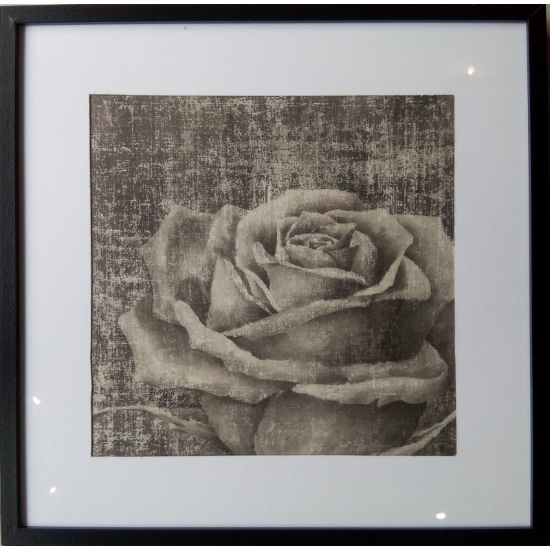 158 Patrick Pawliczek - Rose 2