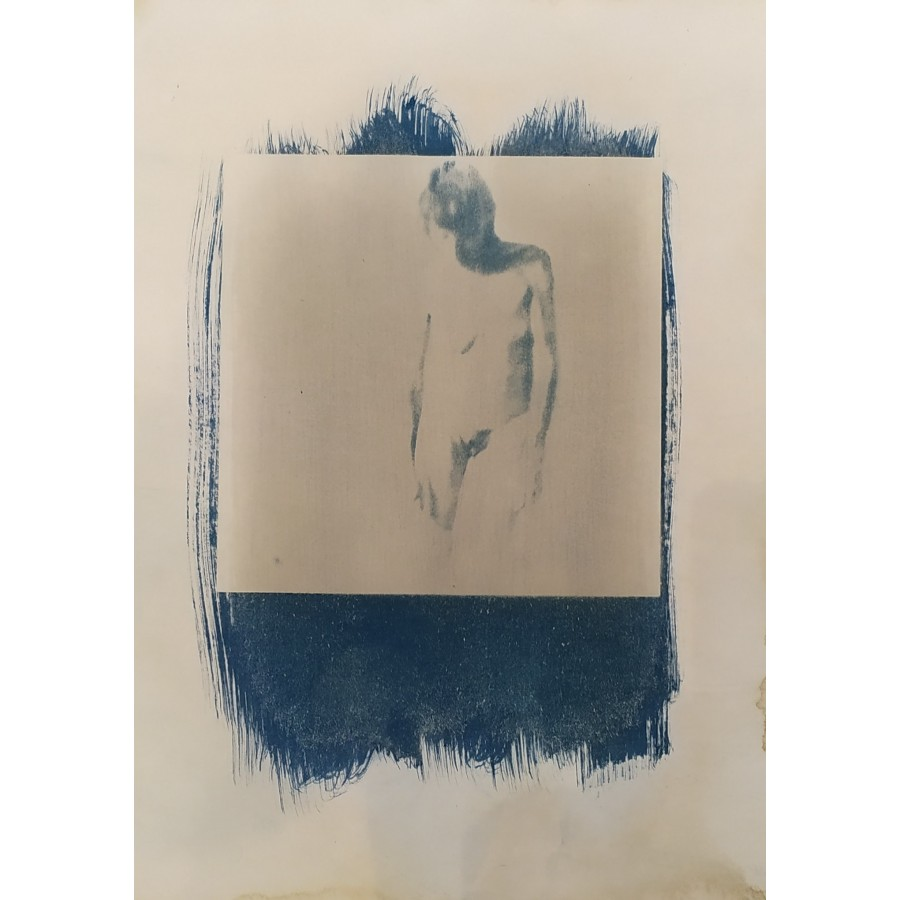 226 Bruno Dumas - Cyanotypes grand format