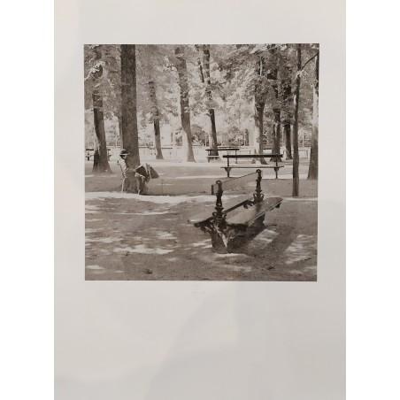 224 Bruno Dumas - Gomme bichromatée grand format