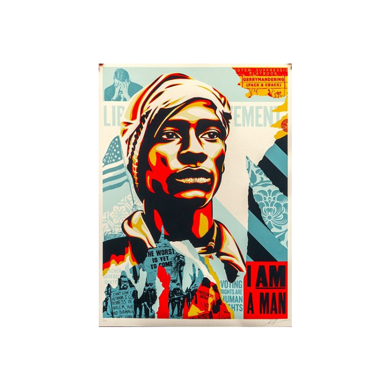 287 Shepard Fairey Obey - Voting Rights are Human Rights